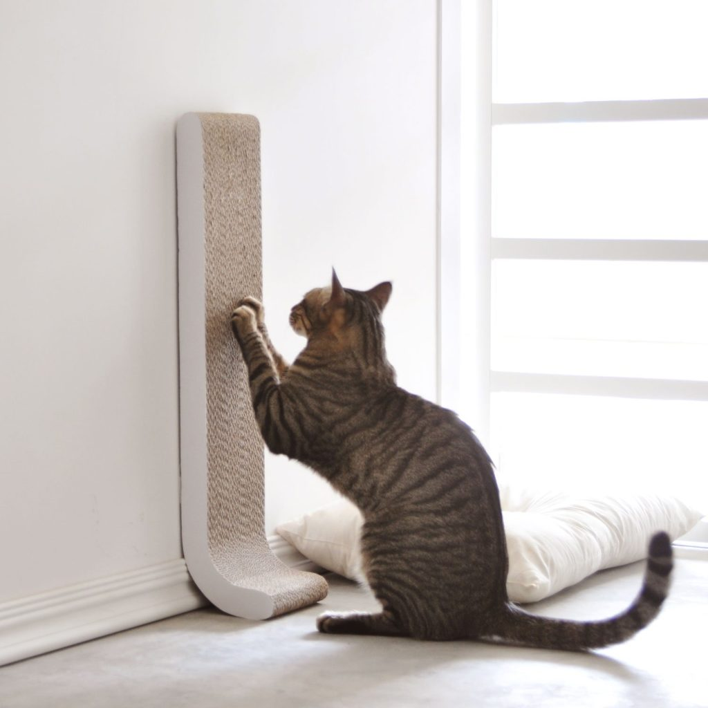 cardboard wall mounted cat scratcher