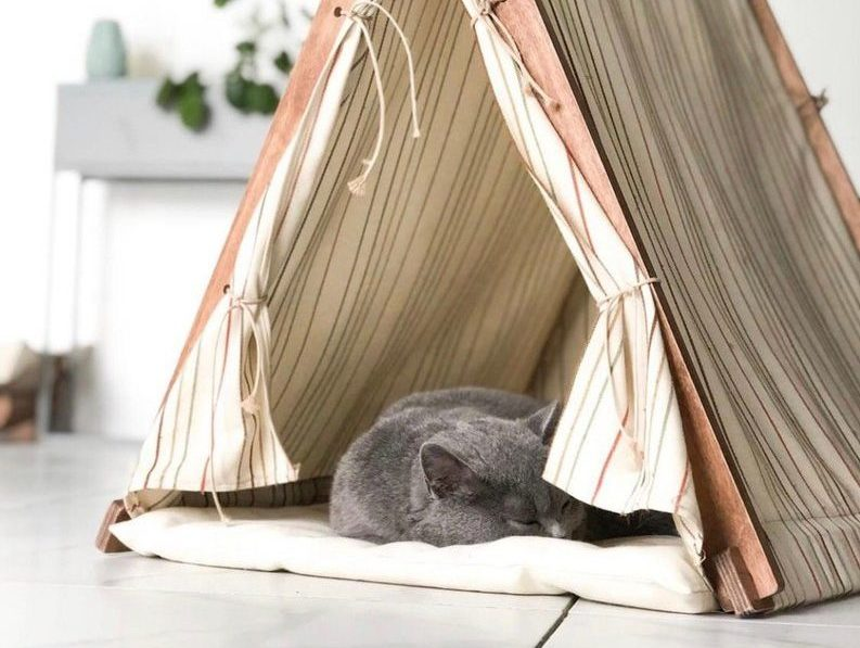 Cat Teepee Designs That Both Your Cat and You Will Love