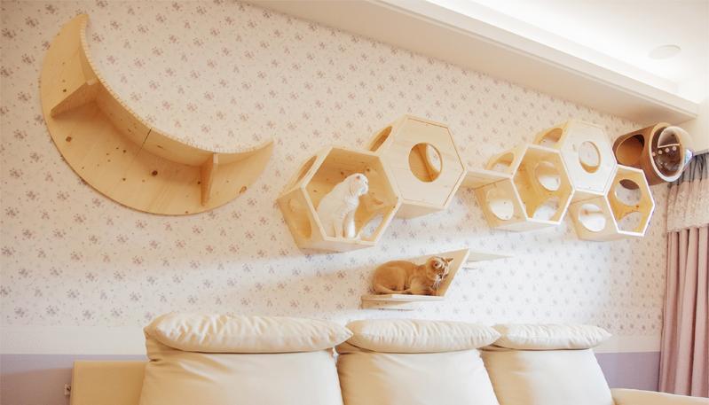 modular cat shelves layout