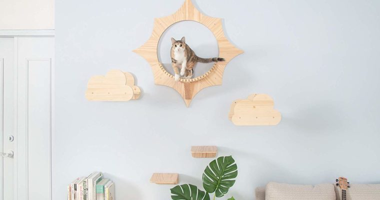 Modular Cat Shelves by Myzoo Will Send Your Cat to Space