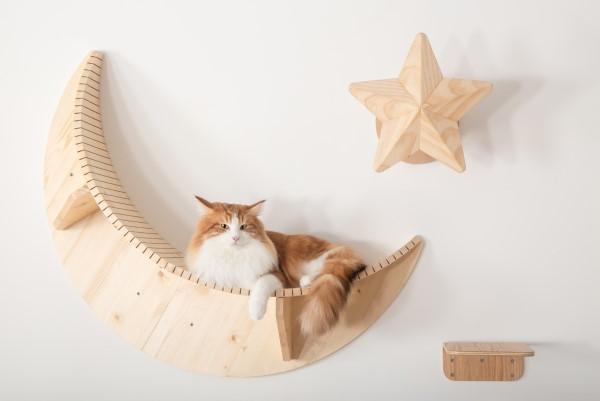 luna cat shelf myzoo
