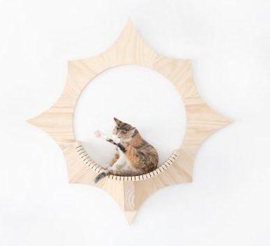 solar cat shelf myzoo