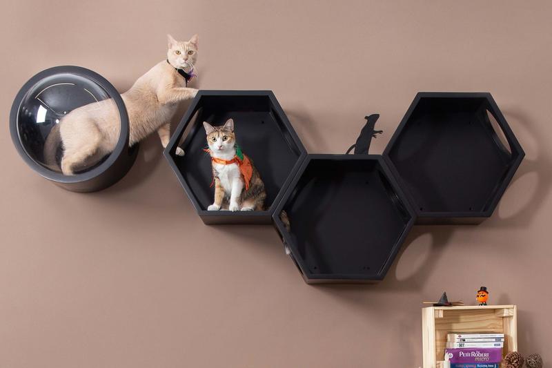 modular cat shelves layout in black