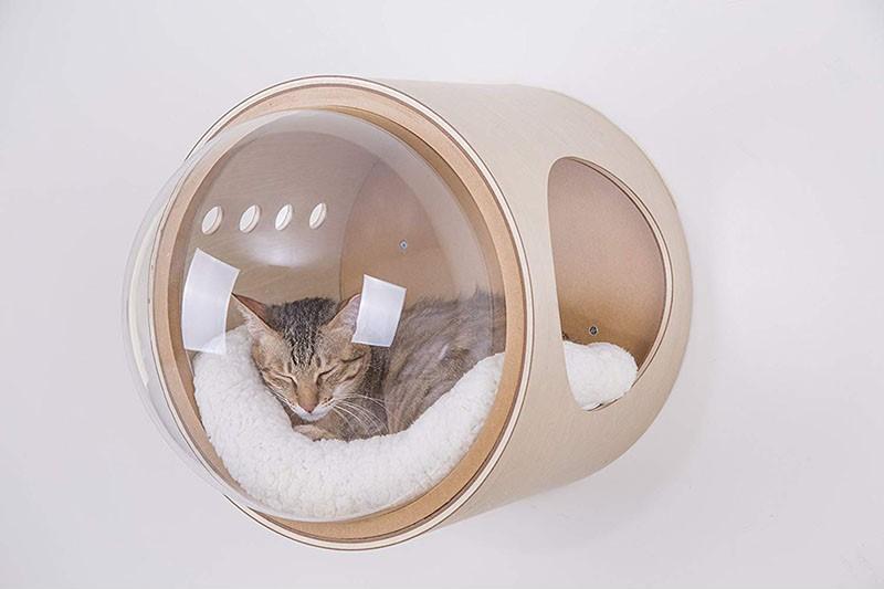 wall mounted cat bed, cat shelf