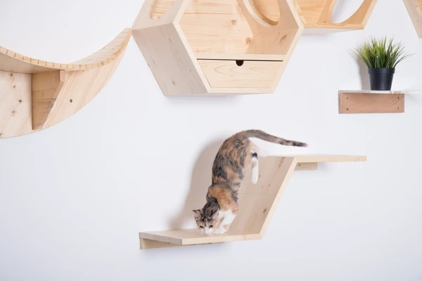 modular cat shelf with angled platform